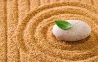 Шри Пракаш Джи о духовности